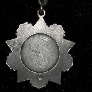 medal-za-otlichie-v-voinskoy-sluzhbe-ii-st--kopiya--138_source